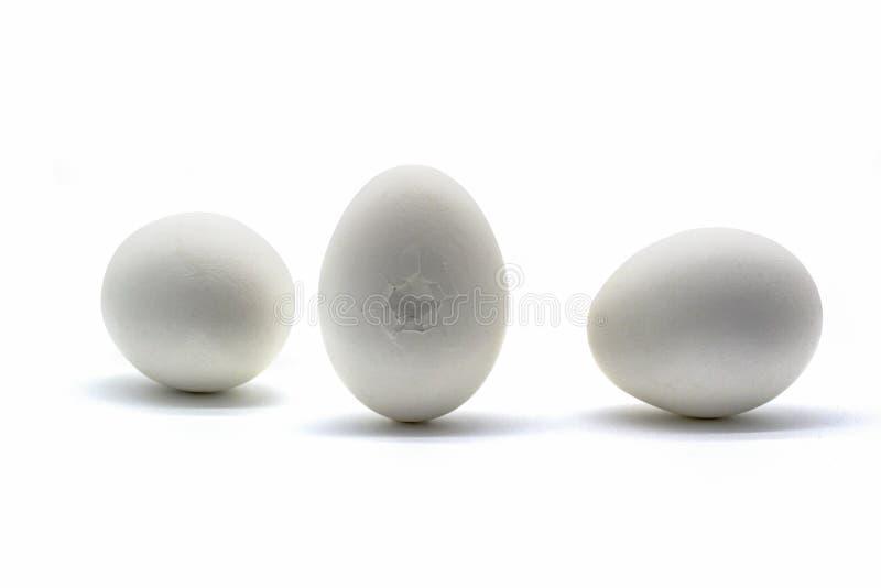 在白色背景隔绝的崩裂的白鸡蛋 库存图片