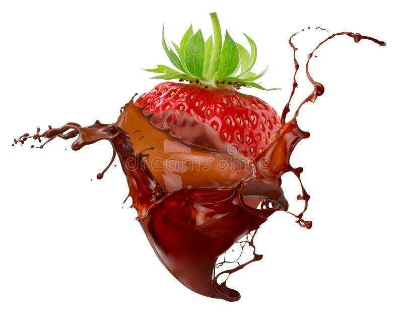 在白色背景隔绝的巧克力飞溅的草莓 库存图片