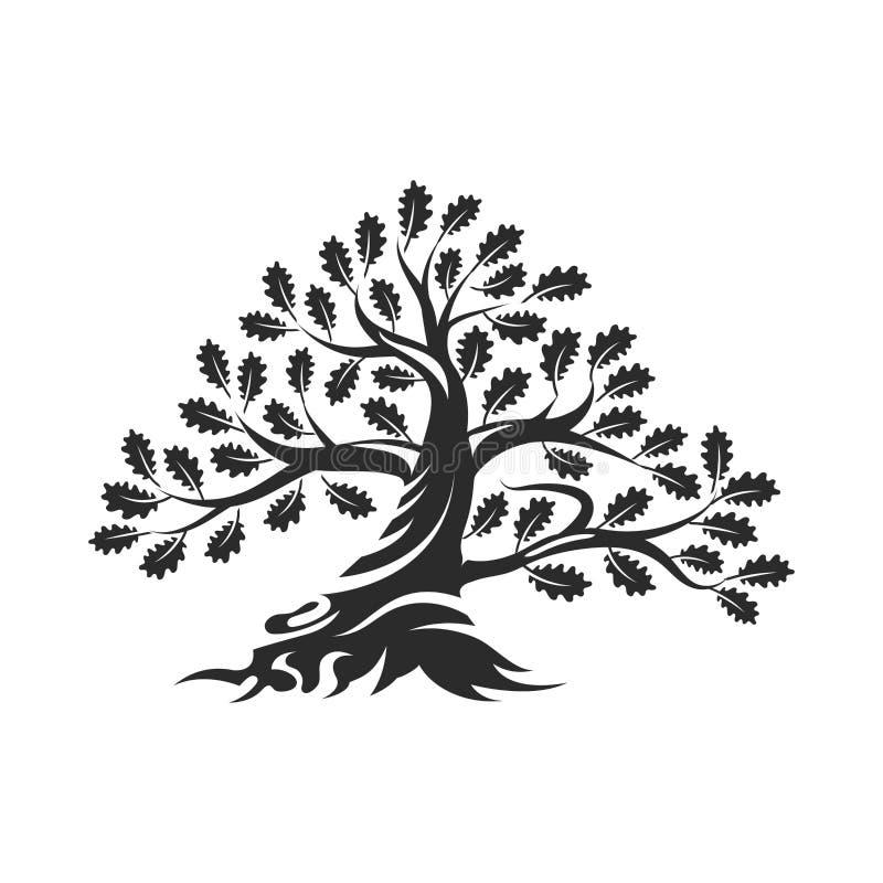 在白色背景隔绝的巨大和神圣的橡树剪影商标徽章 向量例证