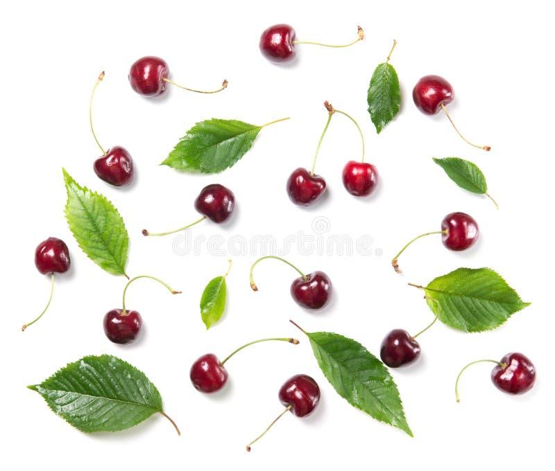 在白色背景隔绝的成熟樱桃莓果和樱桃叶子样式,顶视图 库存图片