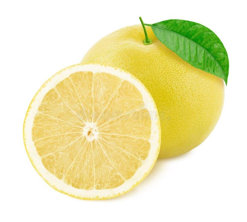 在白色背景隔绝的整个和被对分的白色葡萄柚 免版税库存图片
