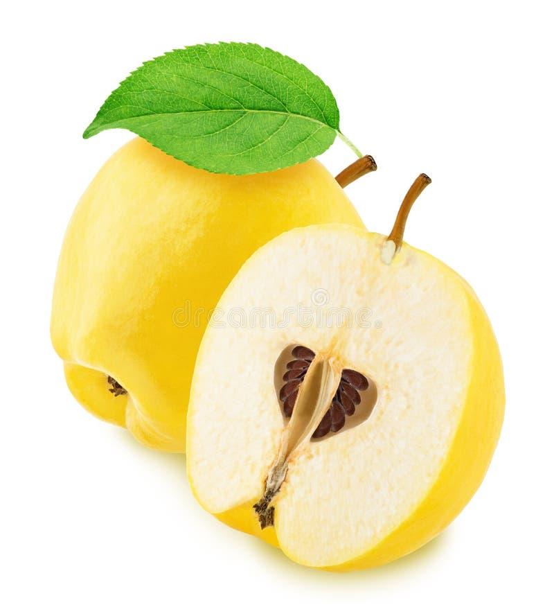 在白色背景隔绝的整个和被对分的苹果柑橘 图库摄影