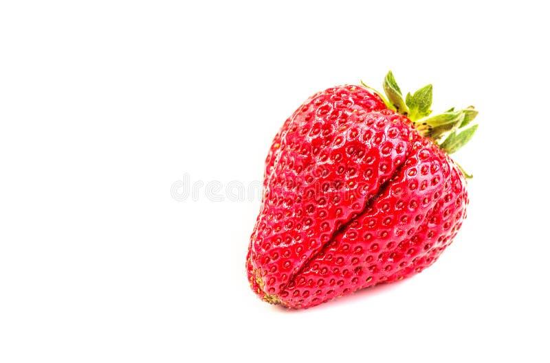 在白色背景隔绝的整个成熟草莓 库存图片