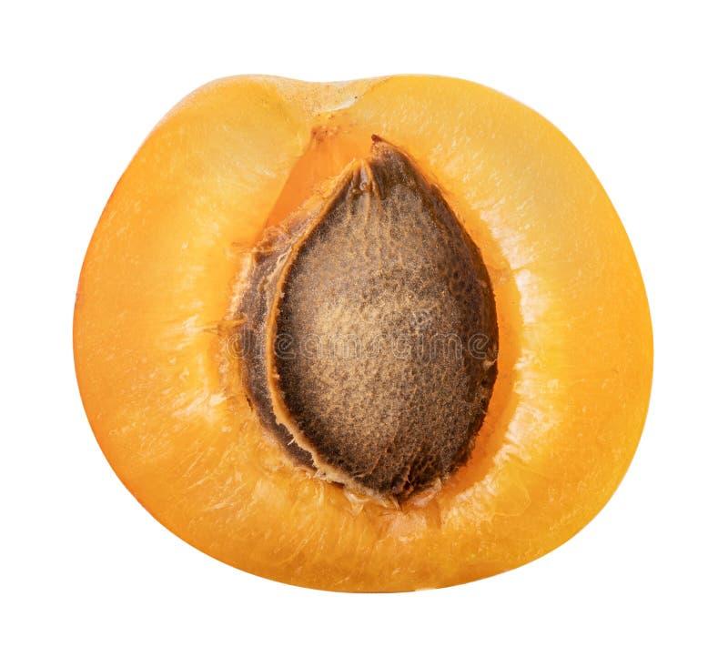 在白色背景隔绝的新鲜的杏子 裁减路线 库存照片