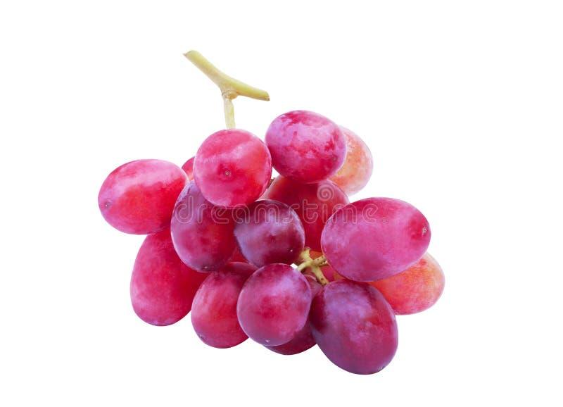 在白色背景隔绝的新鲜的红葡萄 库存图片