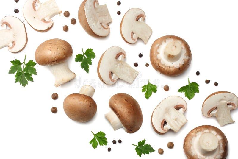 在白色背景隔绝的新鲜的蘑菇蘑菇 顶视图 免版税库存图片