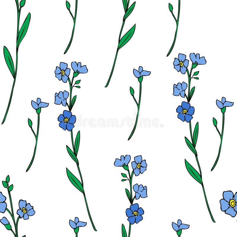 在白色背景隔绝的无缝的样式勿忘草花传染媒介例证,五颜六色的墨水剪影,装饰 库存例证