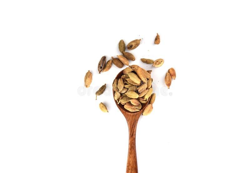 在白色背景隔绝的木匙子的豆蔻果实种子 r 免版税库存图片