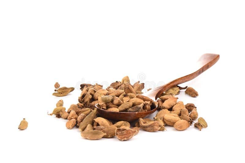 在白色背景隔绝的木匙子的豆蔻果实种子 r 免版税库存照片