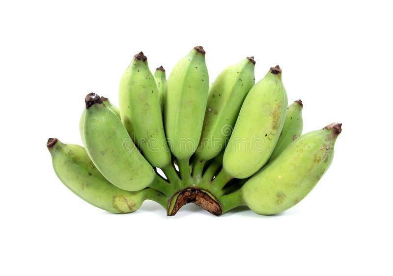 在白色背景隔绝的束未加工的香蕉 被隔绝的耕种的香蕉 绿色香蕉隔绝了 被隔绝的新鲜的香蕉 免版税库存图片