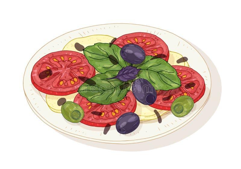 在白色背景隔绝的板材的Caprese沙拉 健康可口意大利餐厅膳食做了新鲜有机 向量例证