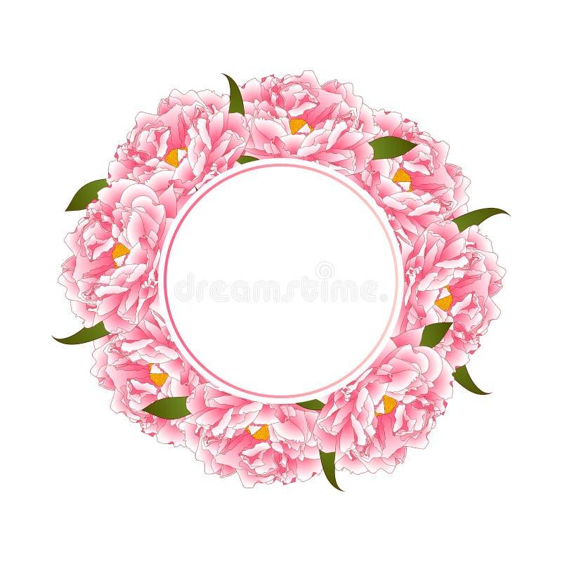 在白色背景隔绝的桃红色牡丹花横幅花圈 也corel凹道例证向量 皇族释放例证