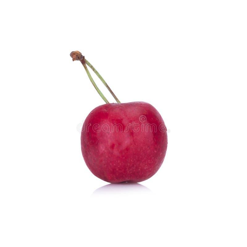 在白色背景隔绝的樱桃唯一 库存图片