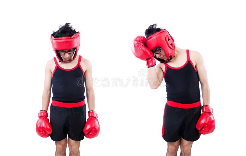 在白色背景隔绝的滑稽的拳击手 库存照片