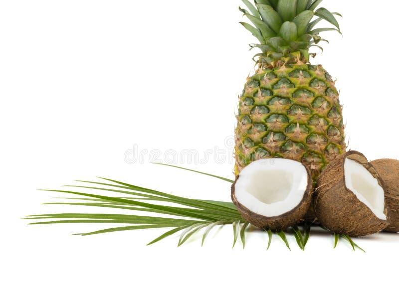 在白色背景隔绝的热带水果 免版税库存图片
