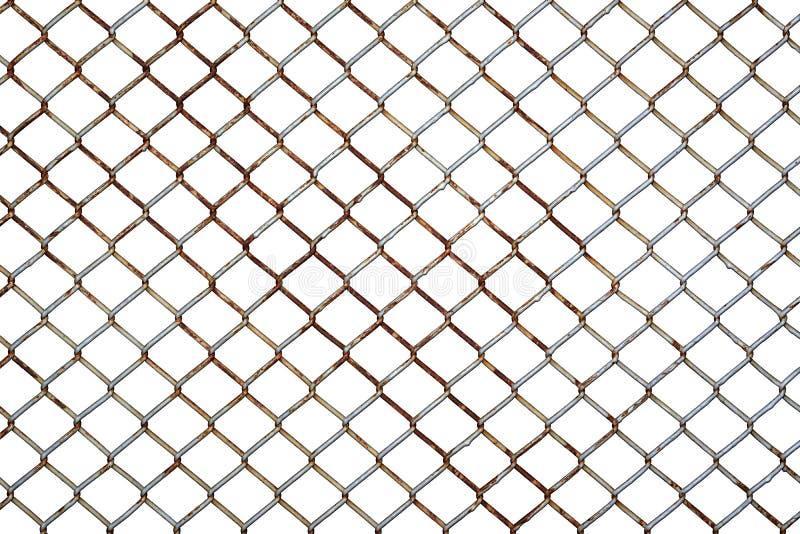 在白色背景隔绝的生锈的钢网状电线网 免版税库存照片
