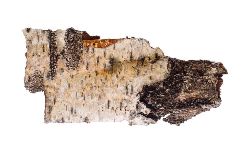 在白色背景隔绝的白桦树皮片断 图库摄影