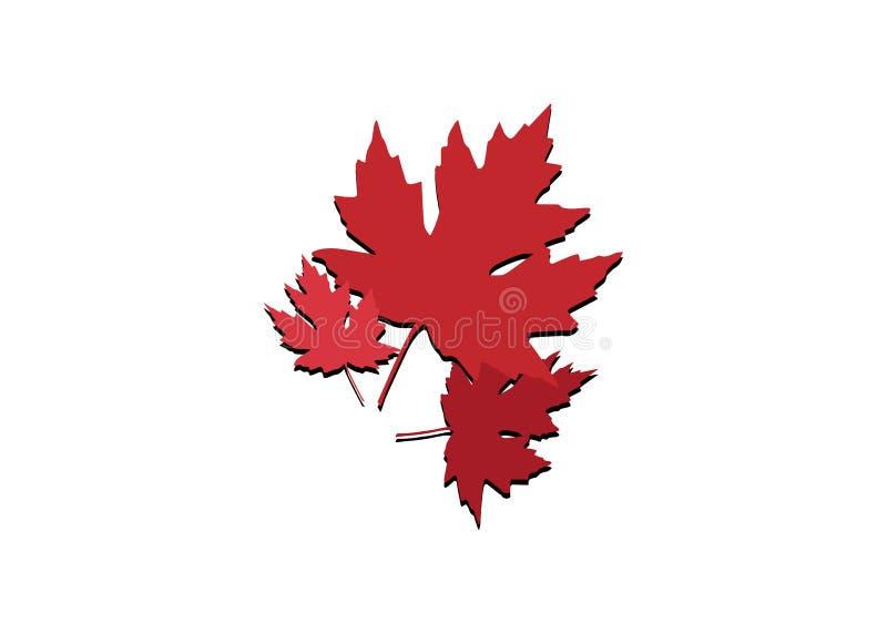 在白色背景隔绝的秋天集合槭树红色叶子传染媒介 商标自然概念 皇族释放例证
