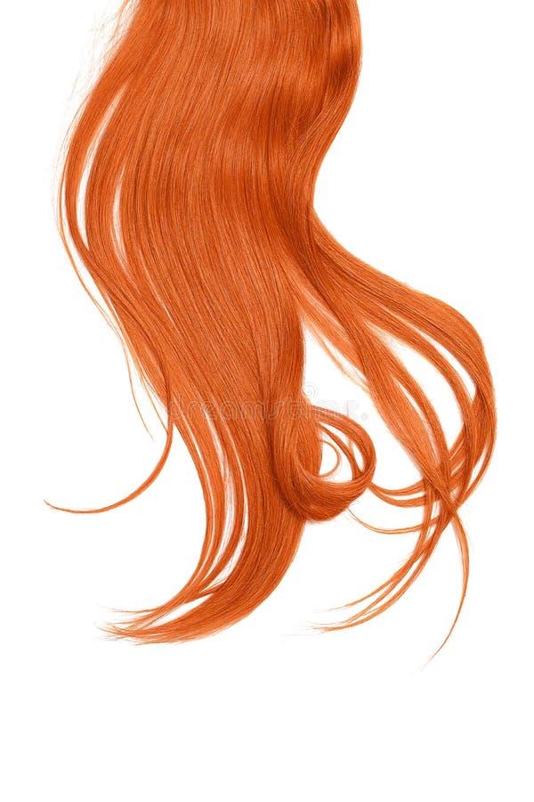 在白色背景隔绝的红色头发 长的被弄乱的马尾辫 免版税库存照片