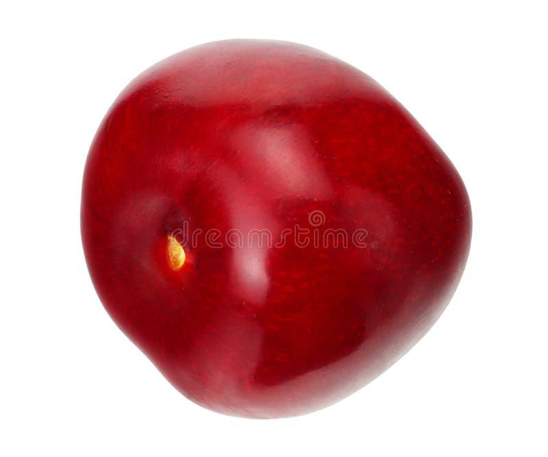 在白色背景隔绝的红色樱桃 库存图片