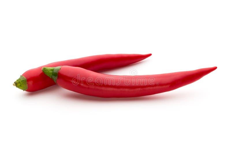 在白色背景隔绝的红辣椒 免版税库存图片