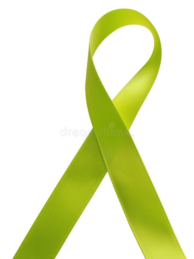 在白色背景隔绝的绿色丝带了悟 库存照片