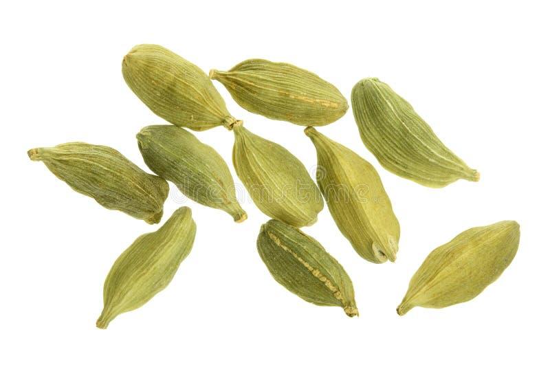 在白色背景隔绝的绿色豆蔻果实种子 顶视图 平的位置 库存图片