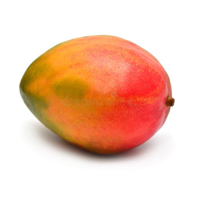 在白色背景隔绝的芒果整体 美丽的多彩多姿的热带水果黄色,红色,绿色 平的位置,顶视图, 库存图片