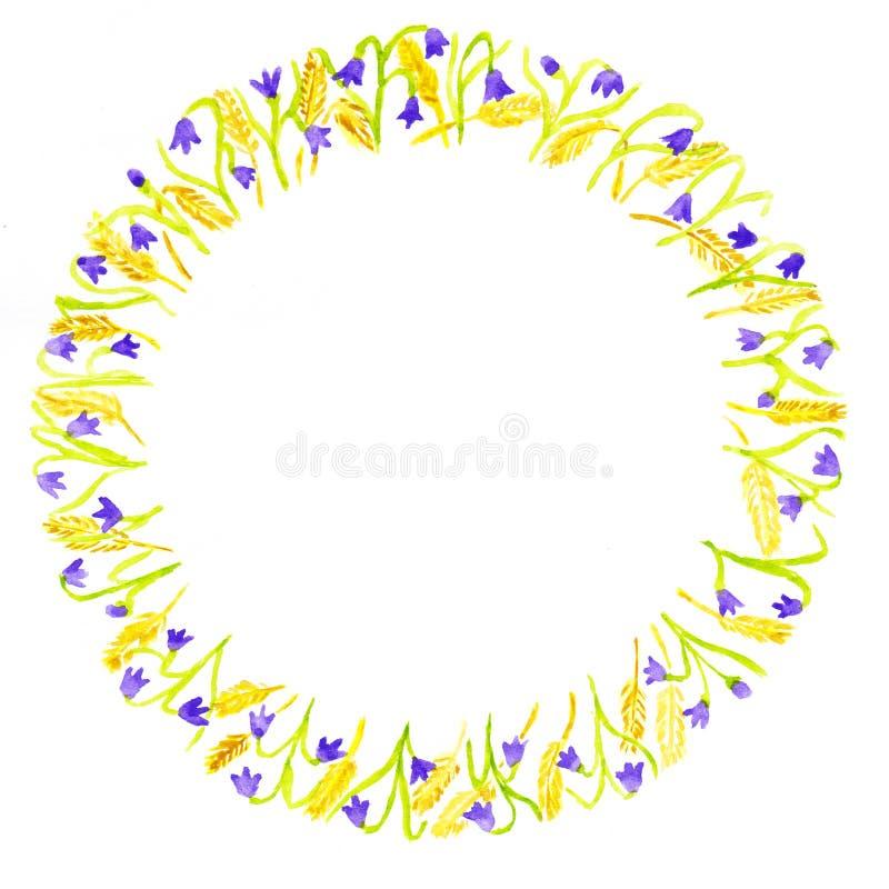 在白色背景隔绝的花卉框架 会开蓝色钟形花的草和在圈子安排的麦子耳朵 库存例证