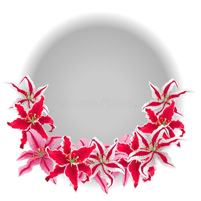 在白色背景隔绝的花桃红色百合 色的传染媒介例证 库存例证