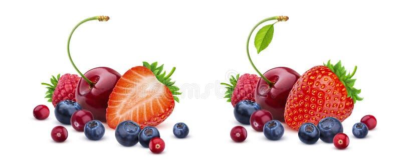 在白色背景隔绝的莓果混合,堆新鲜的野生莓果 免版税库存图片