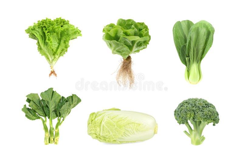 在白色背景隔绝的设置新鲜的绿色菜 免版税库存图片