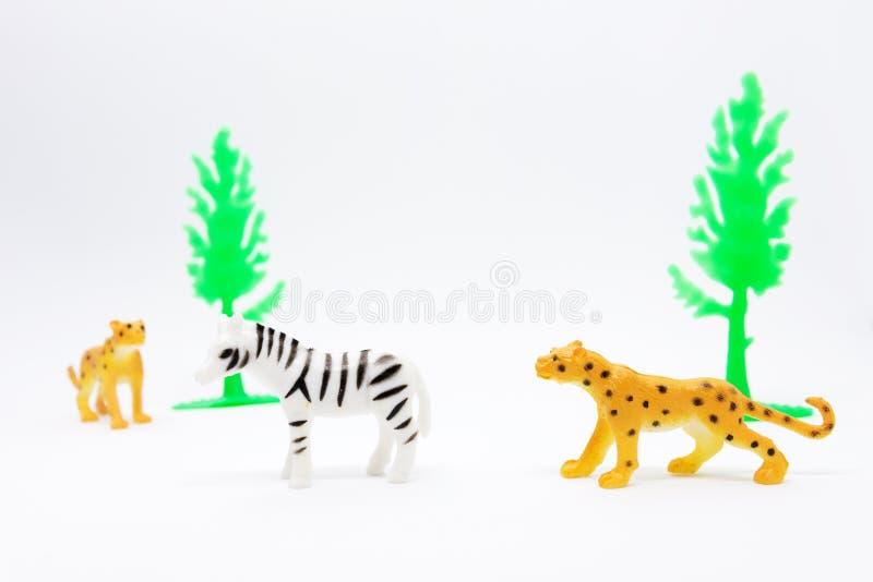 在白色背景隔绝的豹子和斑马模型,动物 库存照片