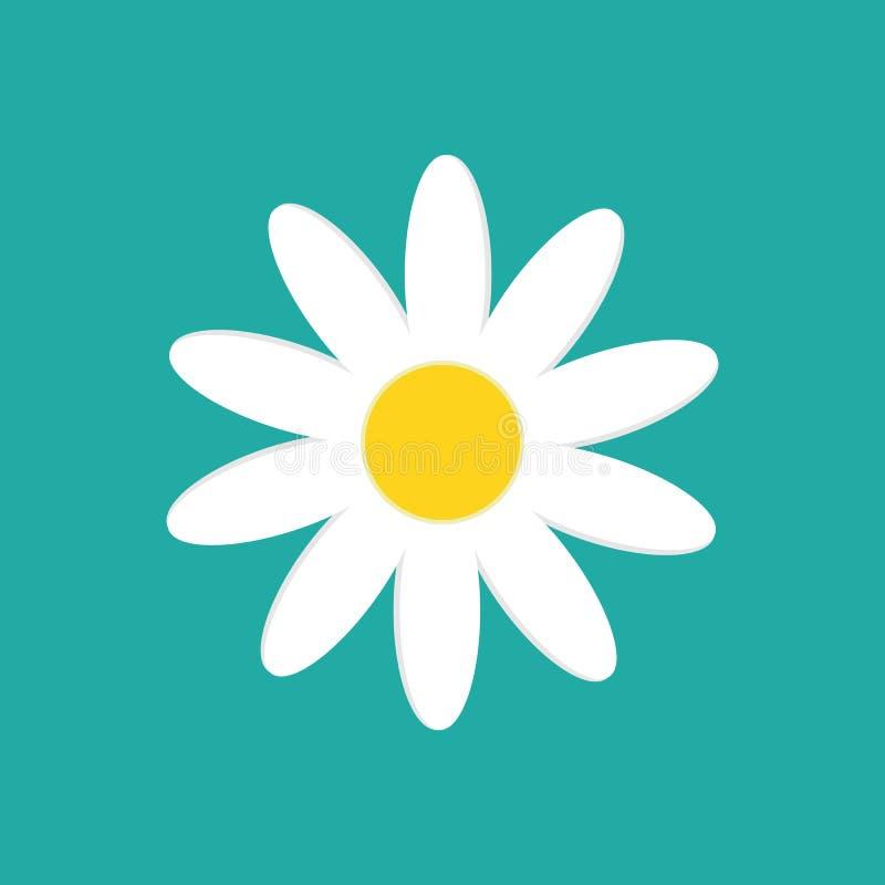 在白色背景隔绝的雏菊春黄菊 也corel凹道例证向量 向量例证