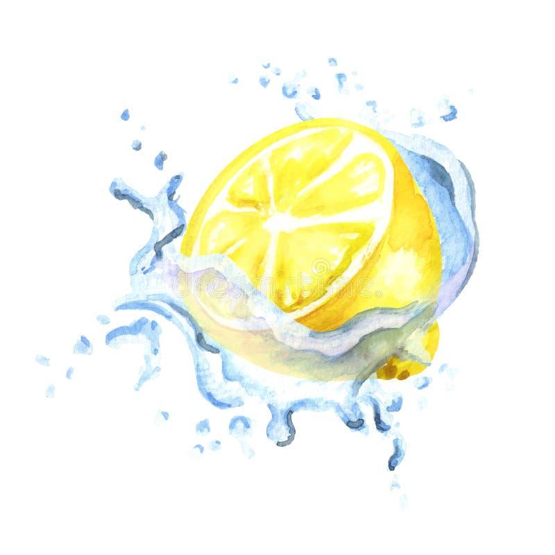 在白色背景隔绝的飞溅的新鲜的柠檬 水彩手拉的例证 库存例证