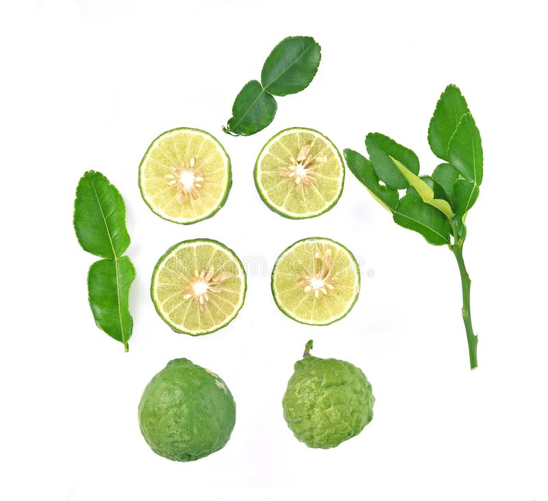 在白色背景隔绝的香柠檬果子顶视图 库存图片