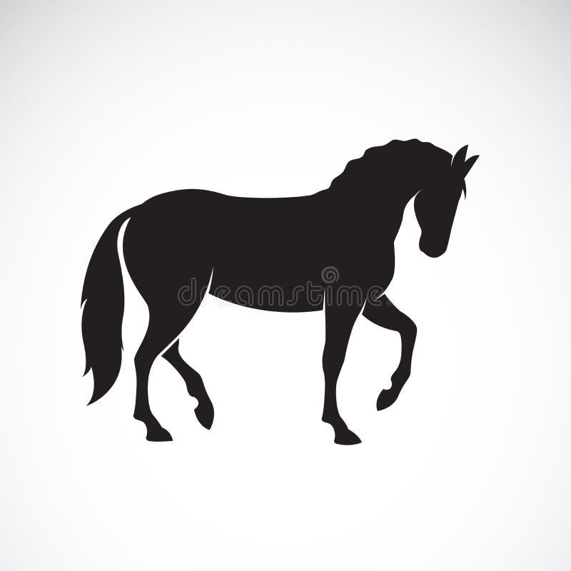 在白色背景隔绝的马的传染媒介 通配的动物 库存例证