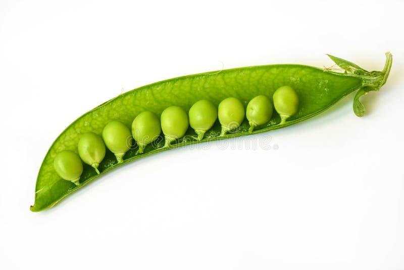 在白色背景隔绝的半绿豆 免版税库存照片