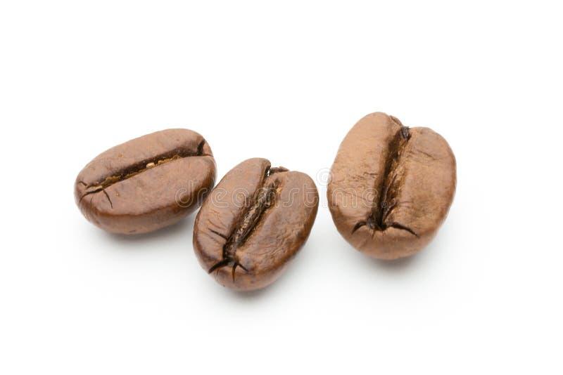 在白色背景隔绝的咖啡豆,特写镜头,宏指令 免版税库存图片