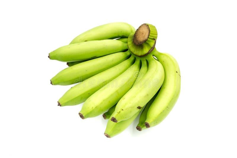 在白色背景隔绝的大新鲜的绿色香蕉 图库摄影