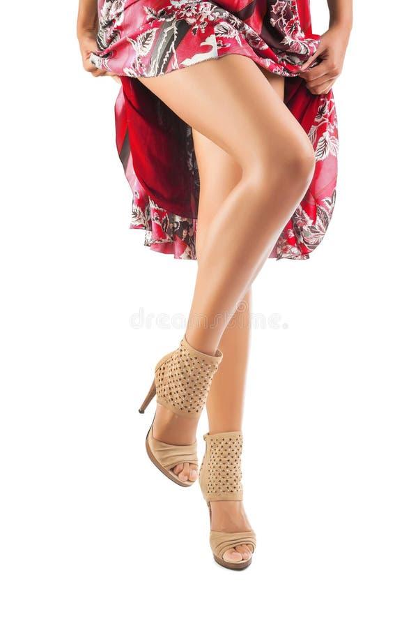 在白色背景隔绝的女性的美好的腿 库存照片