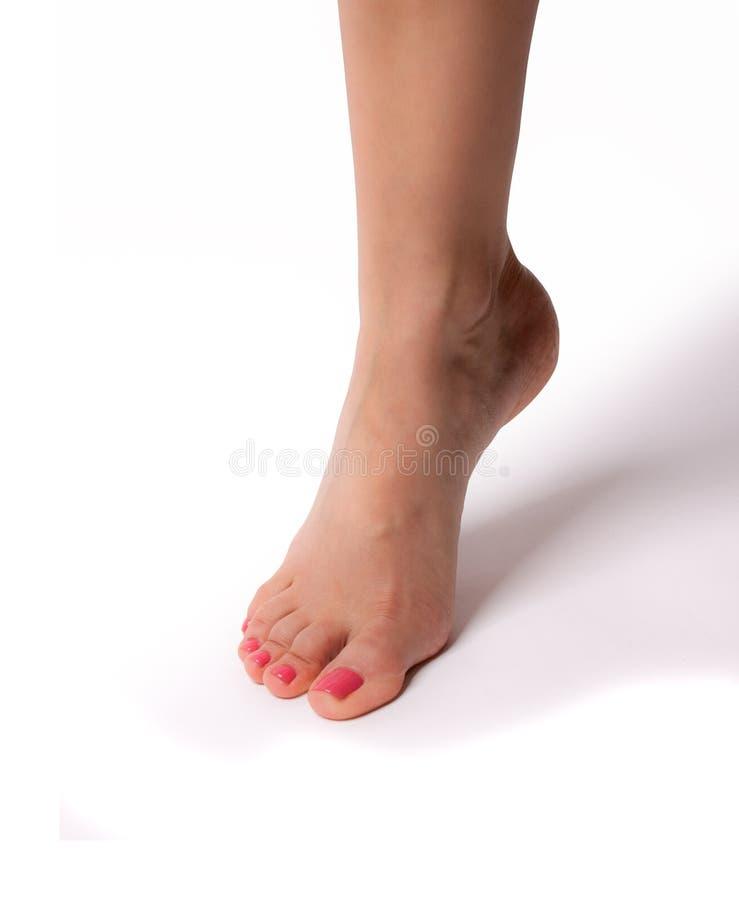 在白色背景隔绝的女性苗条美好的腿 图库摄影