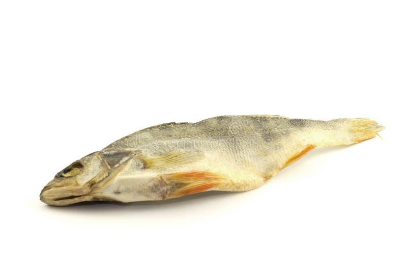 在白色背景隔绝的干燥鱼 免版税库存照片