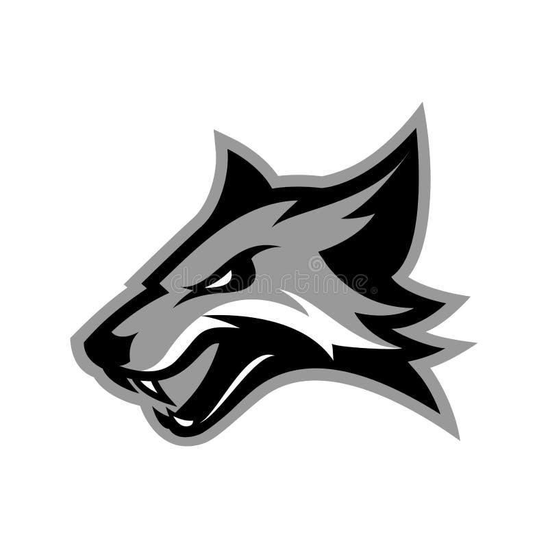 在白色背景隔绝的愤怒的狐狸体育俱乐部传染媒介商标概念 皇族释放例证