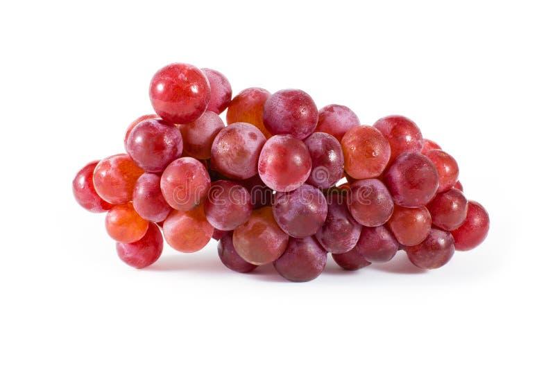 在白色背景隔绝的新鲜的红葡萄 免版税库存照片