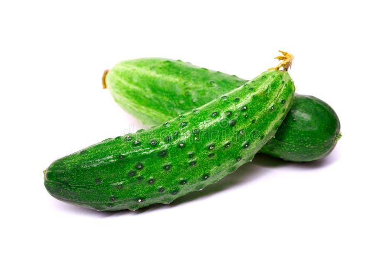 Download 在白色背景隔绝的新鲜的黄瓜 库存照片. 图片 包括有 健康, 沙拉, 素食主义者, 生气勃勃, 成熟, 成份 - 72370234