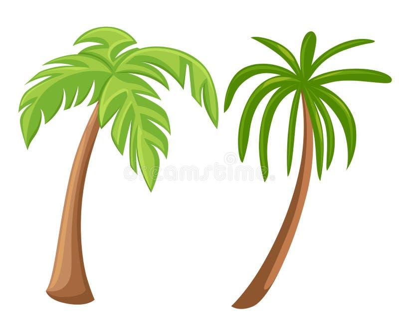 在白色背景隔绝的棕榈树 美丽的vectro palma树集合例证 库存例证