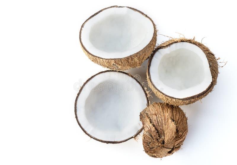 在白色背景隔绝的椰子 免版税库存照片