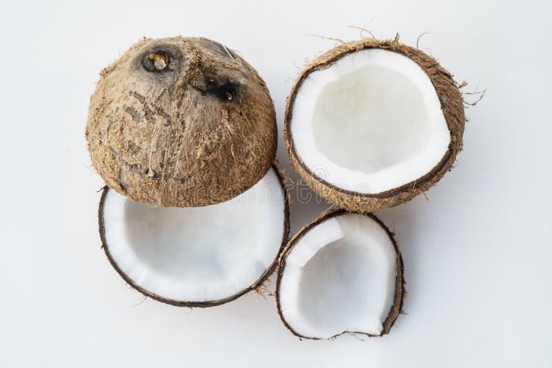 在白色背景隔绝的椰子 免版税图库摄影