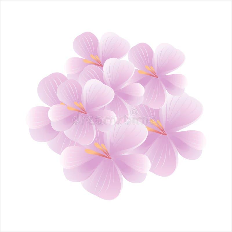 在白色背景隔绝的浅紫色的紫罗兰色花花束  Apple结构树花 樱花 传染媒介EPS 10 cmyk 库存例证